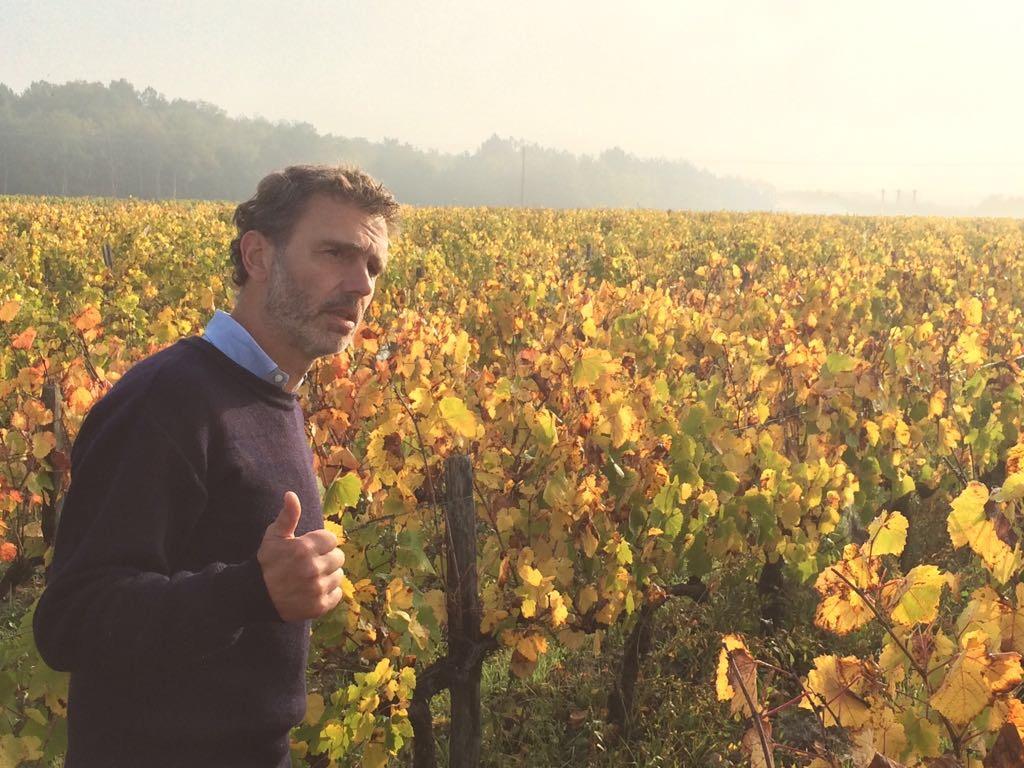 Herfst in de wijngaard, druk in gesprek